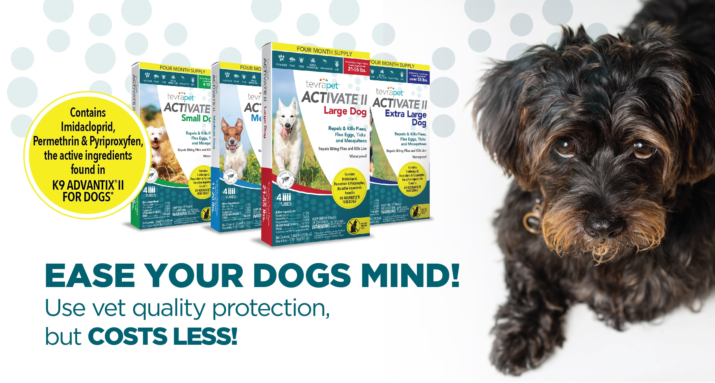 ease your dogs mind copy
