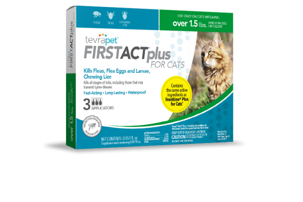 FirstAct-Plus-Cat package